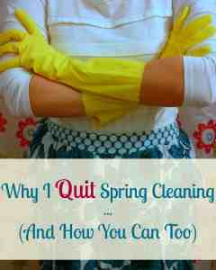Quit Spring Cleaning