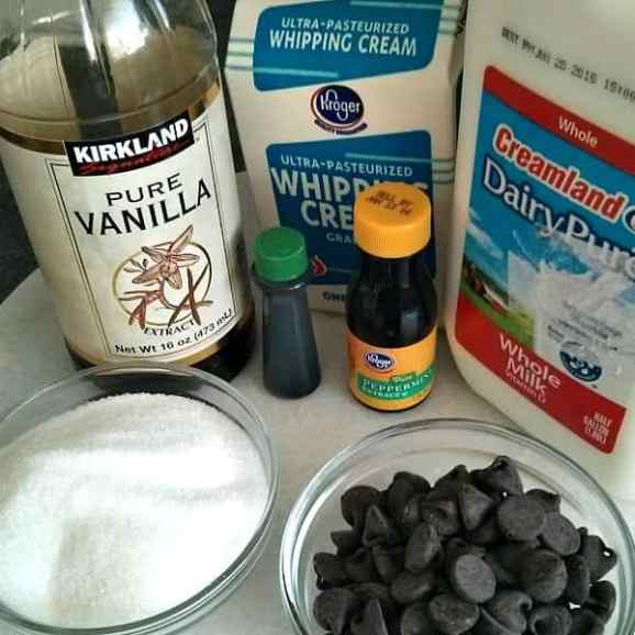 Mint-Chocolate-Chip-Ice-Cream-Ingredients