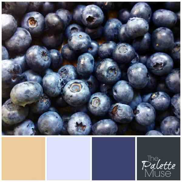 From lightest lilac, to deepest slate blue, this blueberry palette covers the spectrum! ThePaletteMuse.com