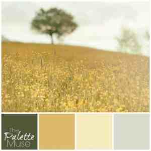 Sunny Field Palette