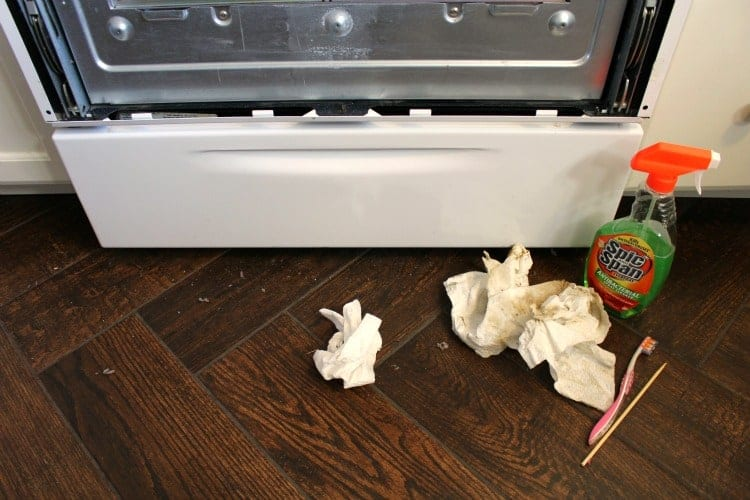 Cleaning Supplies in front of a disassembled oven door.