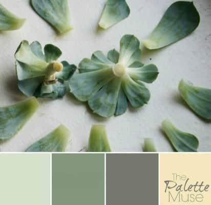 Nursery Palette