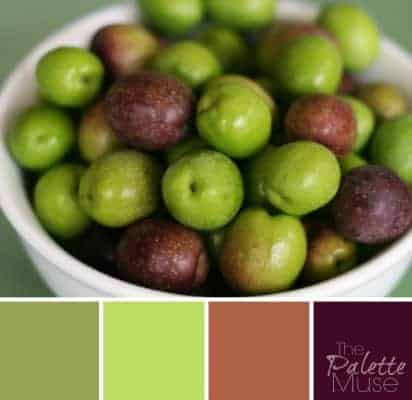 Olive-Palette