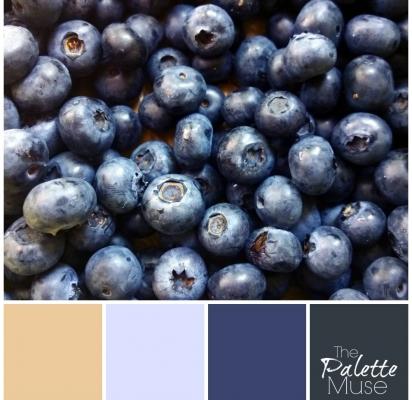 Blueberry-Palette