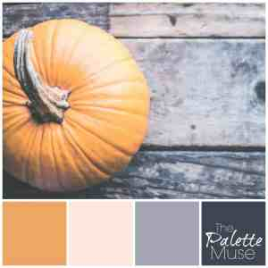 This muted pumpkin palette combines a softened orange hue with neutral blush pink, cool gray, and slate blue for a modern take on fall color.
