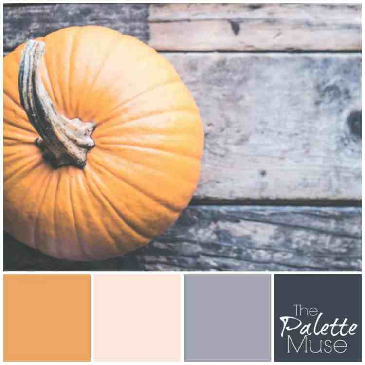This muted pumpkin palette combines a softened orange hue with neutral blush pink, cool gray, and slate blue for a modern take on fall color. #colorpalette #fallcolor #colorinspo