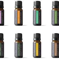 Essential Oil Gift Set 8/10ml (Lavender, Sweet Orange, Peppermint, Lemongrass, Tea Tree, Eucalyptus, Lemon, Frankincense)