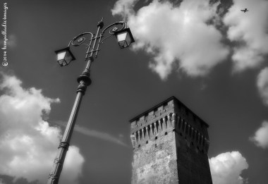 Phoneographic Phlights of Phancy | ©Tom Palladio Images