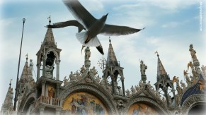 Wings over St. Mark's Square, Venice