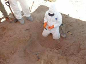 More than 3,000 human bone fragments found in a cartel killing field