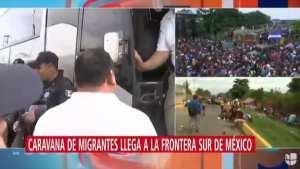 LOUIE GOHMERT! Trump 'has to close the border'