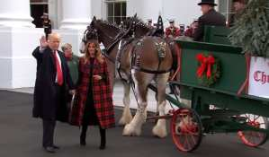 President Trump cancels annual White House Christmas Party for the press