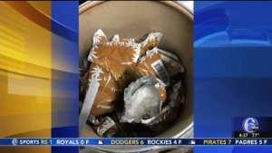 Border Patrol seizes 254 pounds of fentanyl, enough to kill 57M Americans