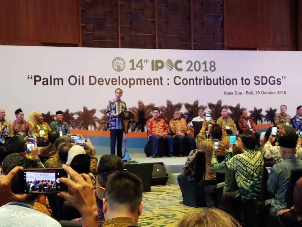 Jokowi Minta Prosedur Dana Peremajaan Sawit Disederhanakan