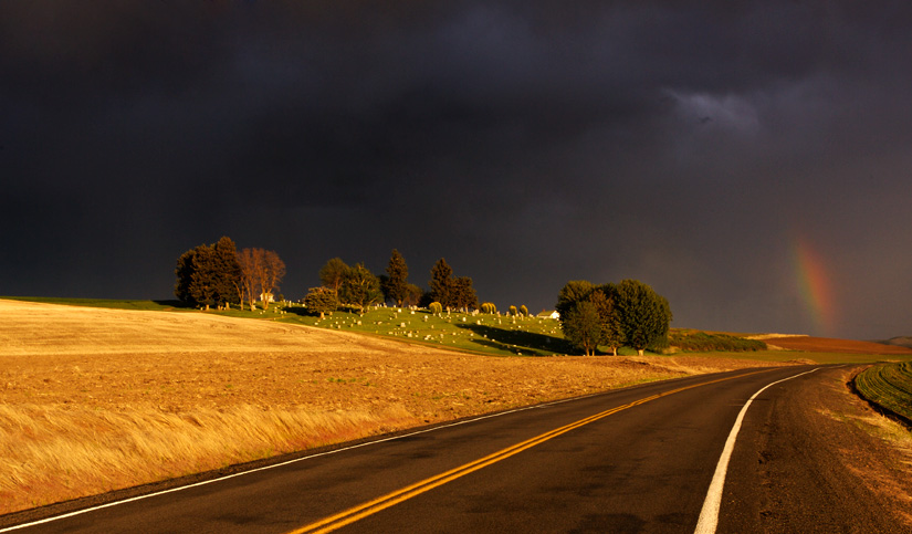 Threatening Sky over Cemetery by Gary Hamburgh - All Rights Reserved