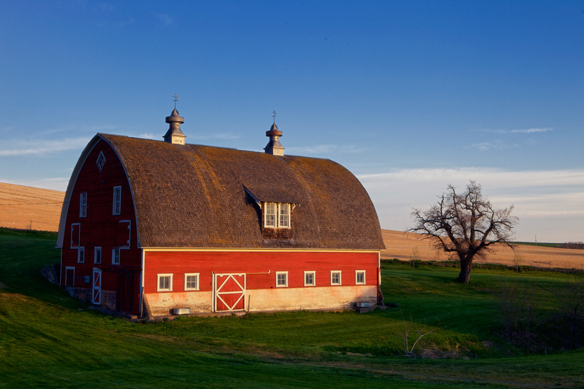 Morning Light at the Barn by Gary Hamburgh - All Rights Reserved