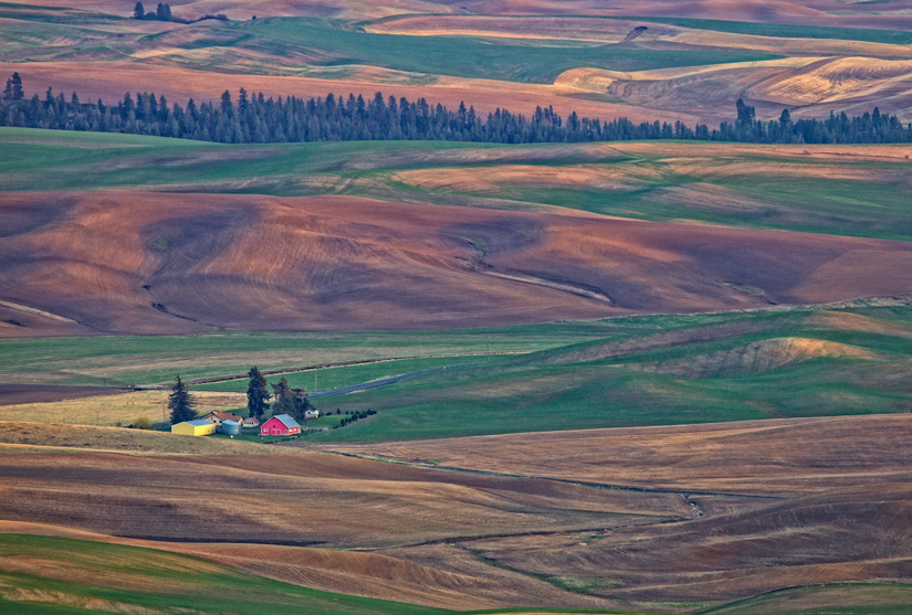 Farm Nestled in Textures and Patterns by Gary Hamburgh - All Rights Reserved