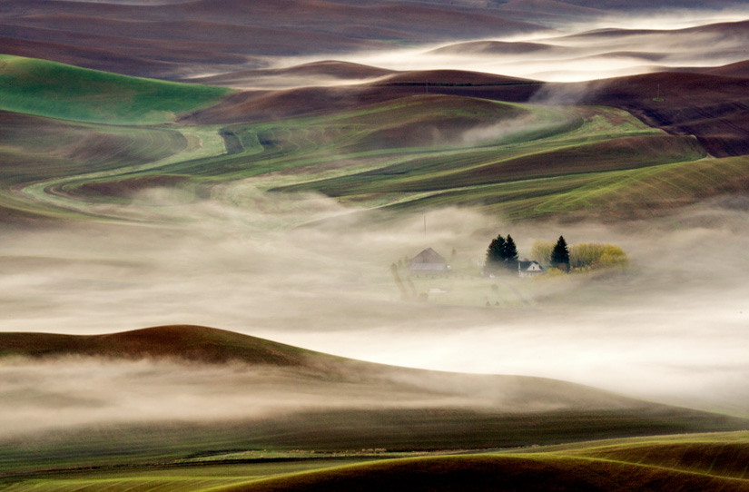 Farm in the Fog by Gary Hamburgh - All Rights Reserved