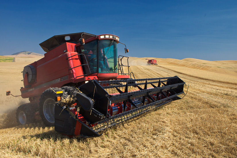 Combines at Work - Copyright Gary Hamburgh 2009 - All Rights Reserved