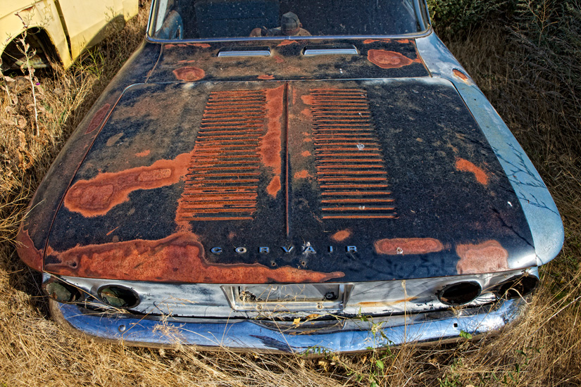Rusted Corvair - Copyright Gary Hamburgh 2009 - All Rights Reserved