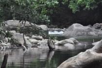 river2_28e