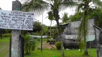 We arrive in Puerta Jimenez and set out of foot. We thought this was an interesting house, especially since judging by the laundry it looks occupied. The sign says watching whales, dolphins, and more. Sport fishing in the Golfito Dulce, trips to Golfito Caña, Playa Blanca