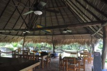 The tiki bar and restaurant, and internet location, and just a lovely, relaxing place to hang out.