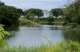 This pretty pond is on the way to La Barqueta. You see a lot of things on a bike that you might miss in a car.