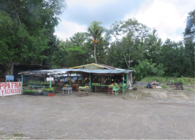 One of many fruit stands along the road