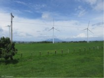There were many windmills along the way too.