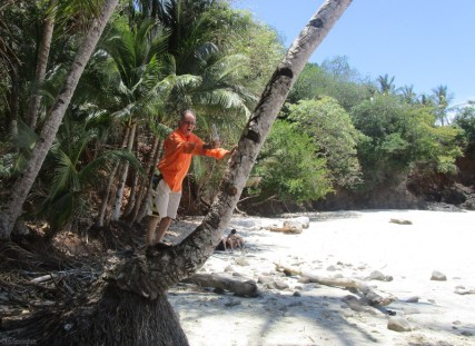 Hold my beer and watch this! (Joel did not actually climb the coconut tree)