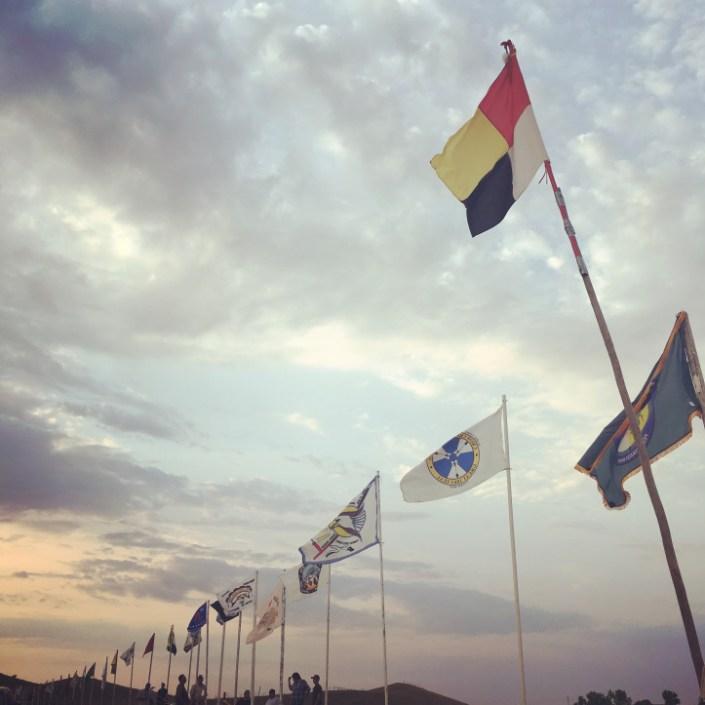Self-Determination, Economic Development, and Native History