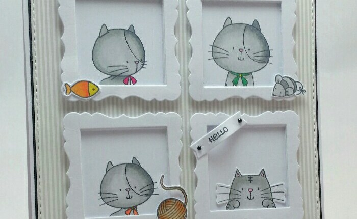 EEM_cats-in-frames1[1]