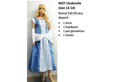 327 Cinderella (size 12-14)