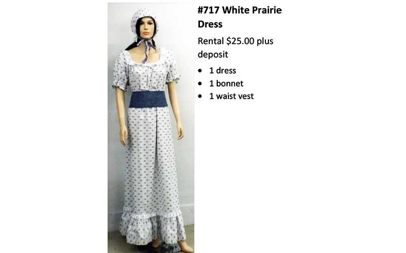 717 White Prairie Dress
