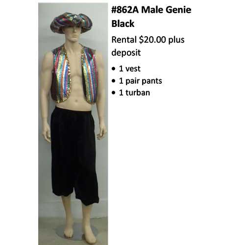 862A Male Genie Black