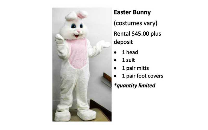 Easter-Bunny Costume