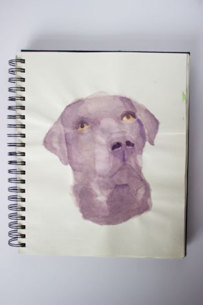 dog watercolour painting