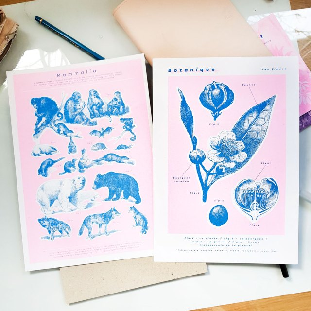 set of risograph art prints