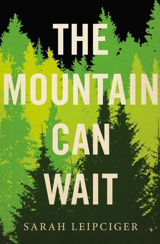 Cover of The Mountain Can Wait by Sarah Leipciger.