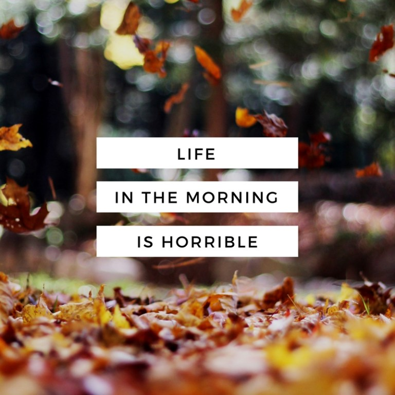 life-in-the-morning