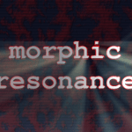 Episode 5 – Morphic Resonance