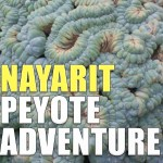 Nayarit Peyote Adventure: Episode 164