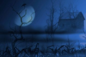 Moonlit by Mike Hardisty