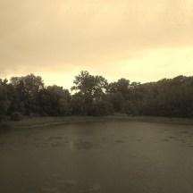 pond on a rainy day