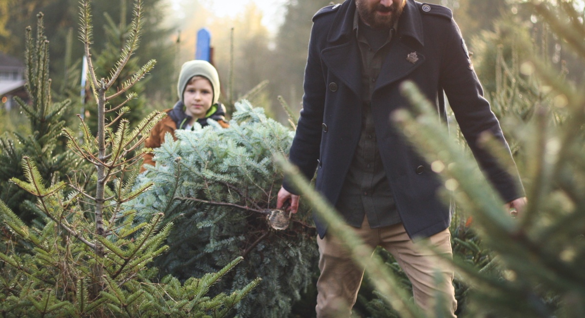 6 Tips to Help Broken Families Enjoy Christmas