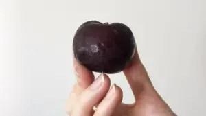 A hand holding a plum