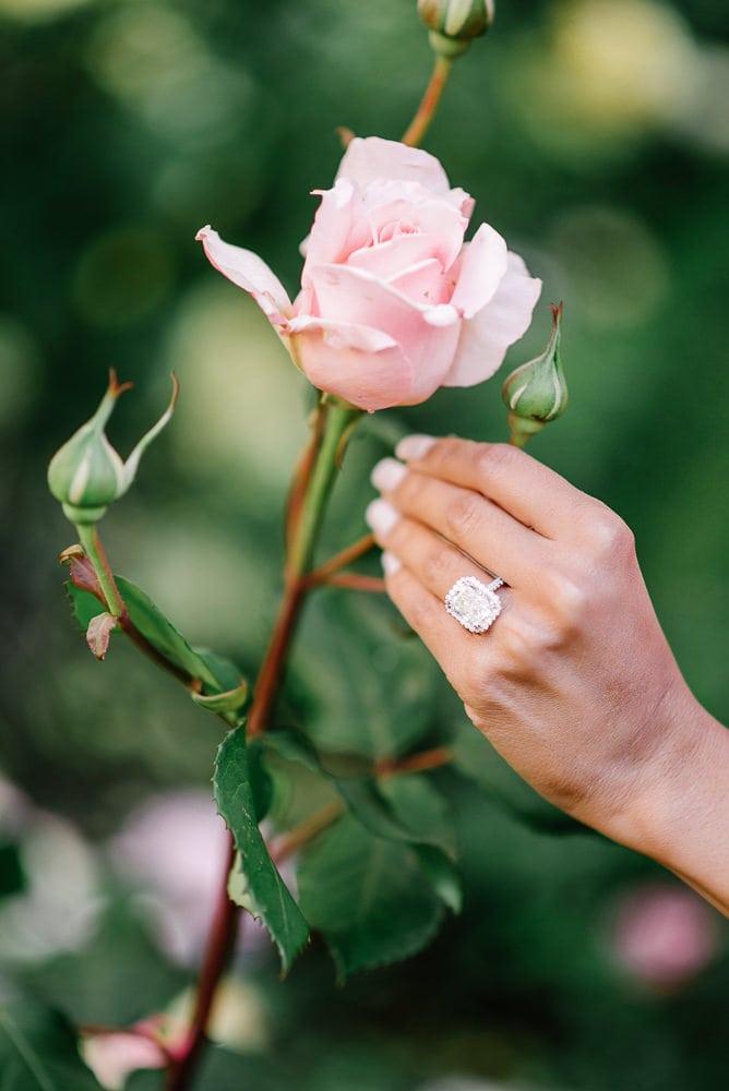 proposal photographer paris - close-up of 5 carats diamond ring on a pink rose