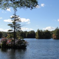 The Year in Review - A Personal View of NH State Parks
