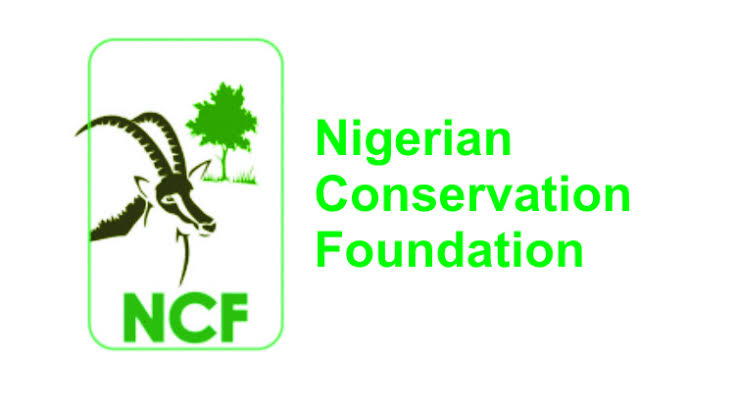NCF Engages over 100 Students in Summer Training